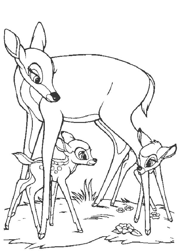 Bambi, : Faline and Bambi Play Under Bambi's Mother Legs Coloring Pages