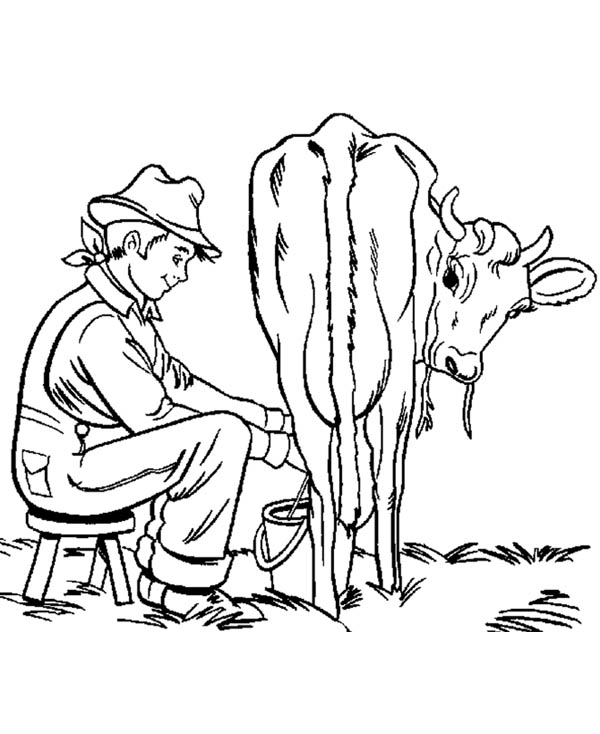 Farm Life, : Farm Life Coloring Pages Take Milk from an Ox