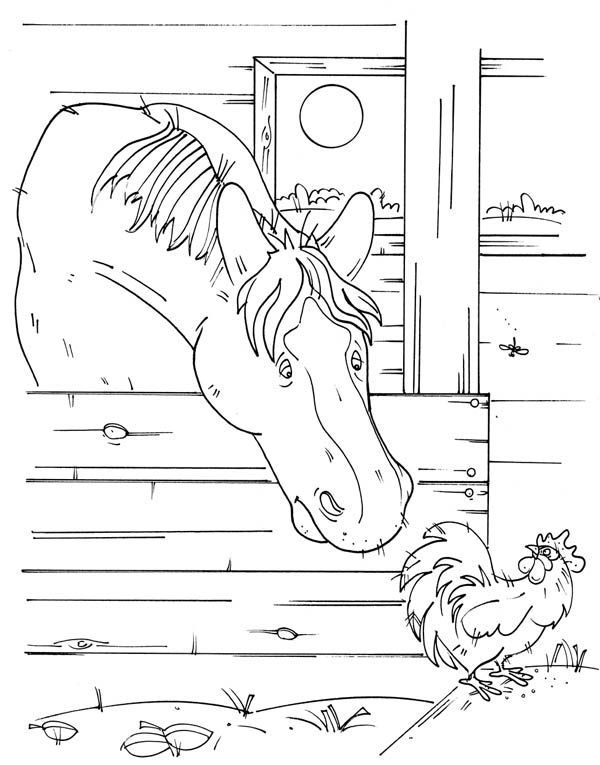 Farm Life, : Farm Life Coloring Pages a Horse and a Rooster