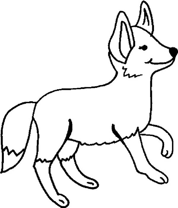 Fox, : Fox Coloring Pages for Kids