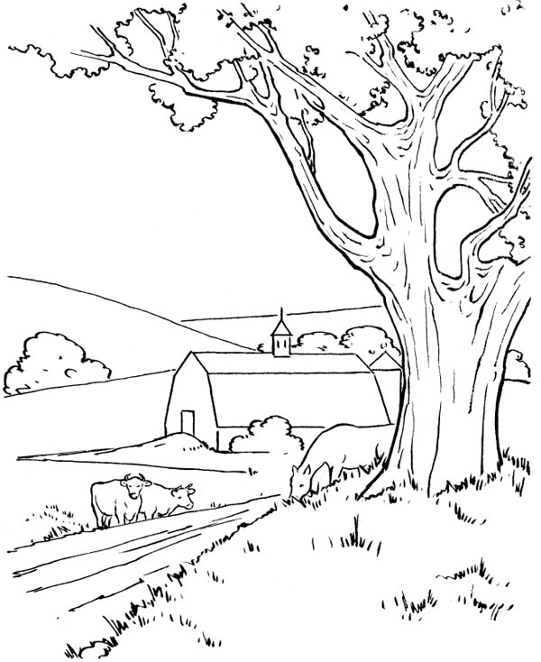 Farm Life, : Going to My Father Barn in Farm Life Coloring Pages