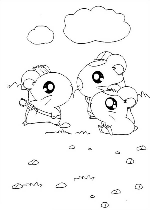 Hamtaro, : Hamtaro Meet His Friends Coloring Pages