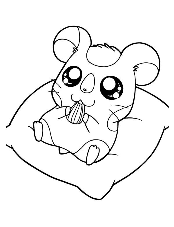 Hamtaro, : Hamtaro Sitting and Eat Sunflower Seed Coloring Pages