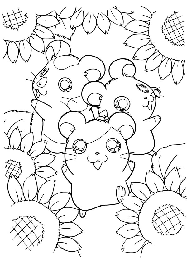 Hamtaro, : Hamtaro and Friends at Sunflower Garden Coloring Pages