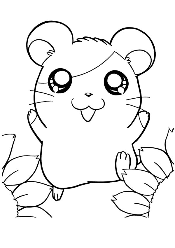 Hamtaro, : Happy Happy Hamtaro Coloring Pages