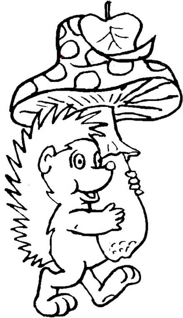 Hedgehogs, : Hedgehog Bring Mushroom to Home Colouring Pages