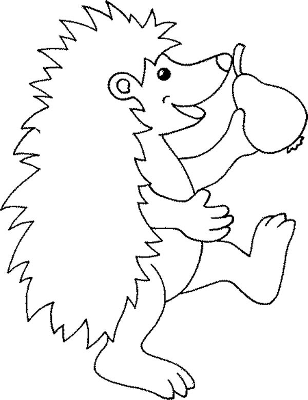 Hedgehogs, : Hedgehog Eating Pear Coloring Pages