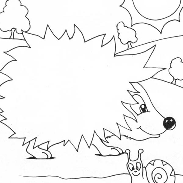 Hedgehogs, : Hedgehog Meet Snail Colouring Pages