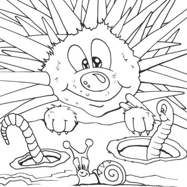 Hedgehogs, : Hedgehog Meet Worm and Snail Coloring Pages