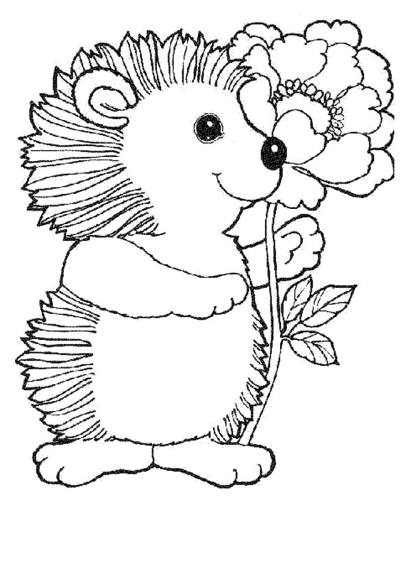 Hedgehogs, : Hedgehog Playboy Bring a Flower Colouring Pages