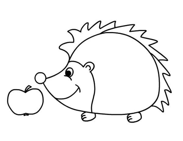 Hedgehogs, : Hedgehog Smelling Apple Colouring Pages