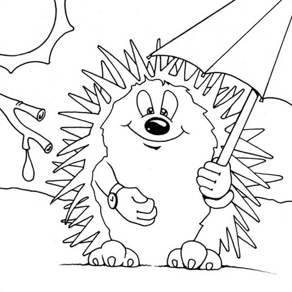 Hedgehogs, : Hedgehog Using Umbrella to Hide from the Sun Colouring Pages