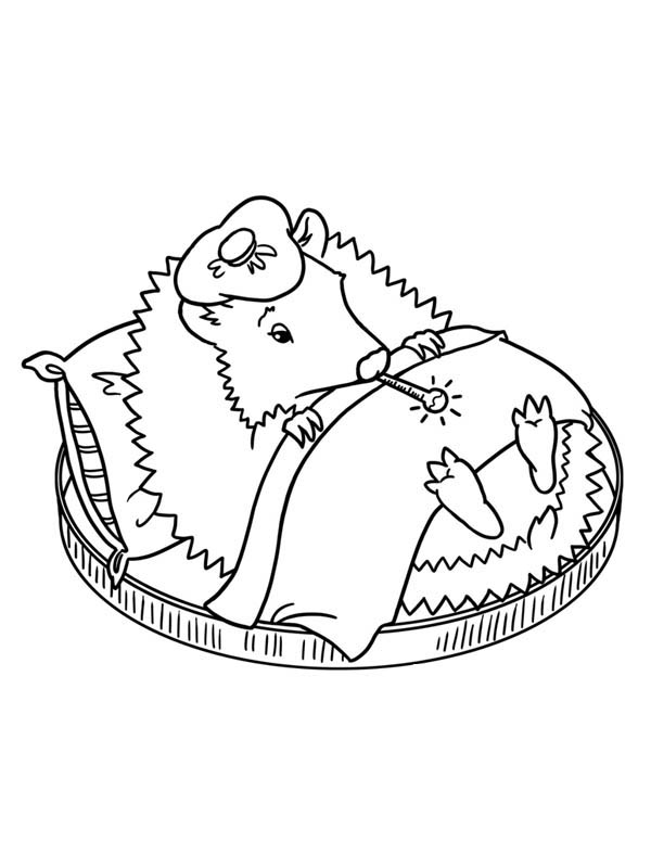 Hedgehogs, : Hedgehog is Having Fever Colouring Pages