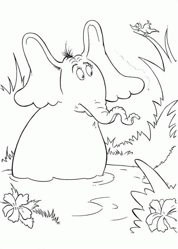 Horton, : Horton Hears a Who Meet a Bird Coloring Pages