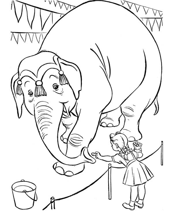 Circus and Carnival, : Little Girl Give Nut to an Elephant at Circus and Carnival Coloring Pages