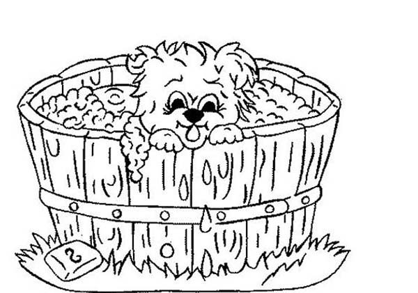 Bath, : Little Puppy Take a Bath in Wooden Pool Coloring Pages