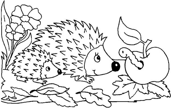 Hedgehogs, : Mother Hedgehog and Her Baby Meet Caterpillar Colouring Pages