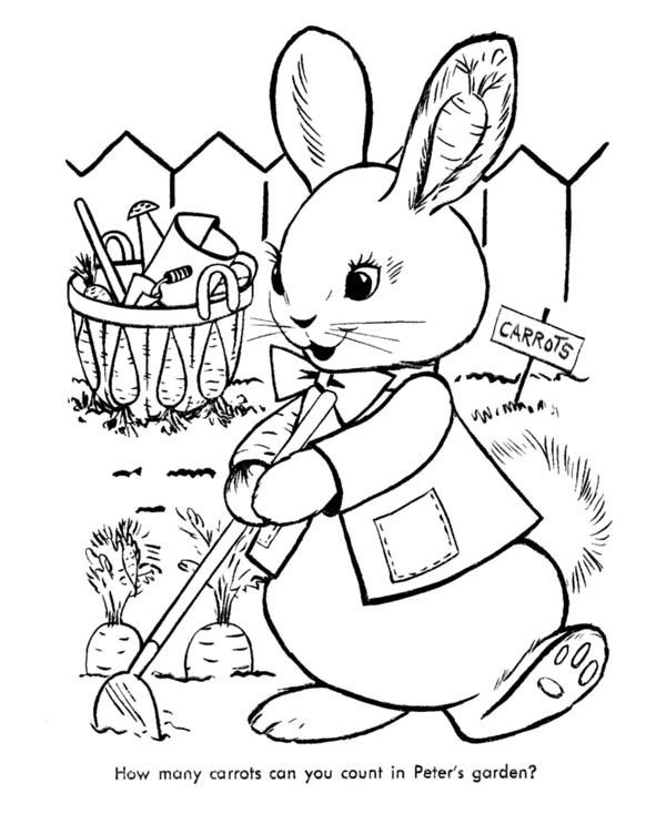 Gardening, : Peter Cottontail Doing Carrot Gardening Coloring Pages