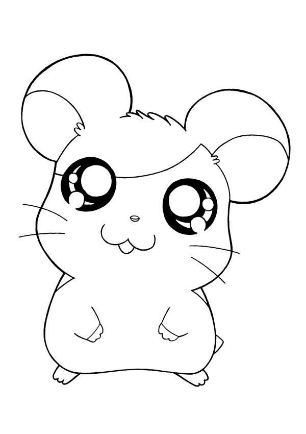 Hamtaro, : Picture of Hamtaro Coloring Pages