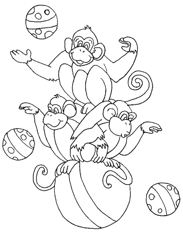 Circus and Carnival, : Three Monkey Sitting on Big Ball at Circus and Carnival Coloring Pages
