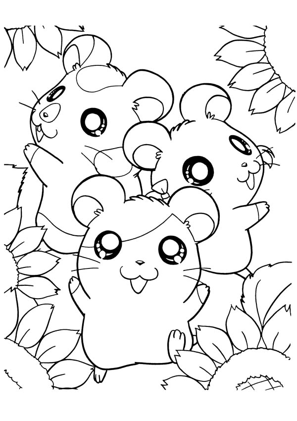 Hamtaro, : how to Draw Hamtaro Coloring Pages