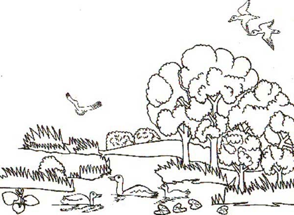 Landscapes, : Animal Habitats Landscapes Coloring Pages