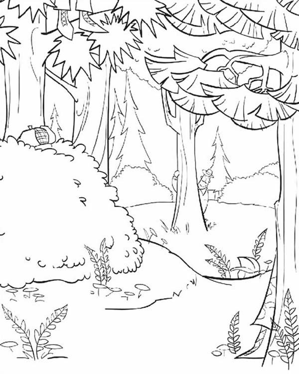Oliver and Company, : Awesome Open Season Timber National Forest Coloring Pages