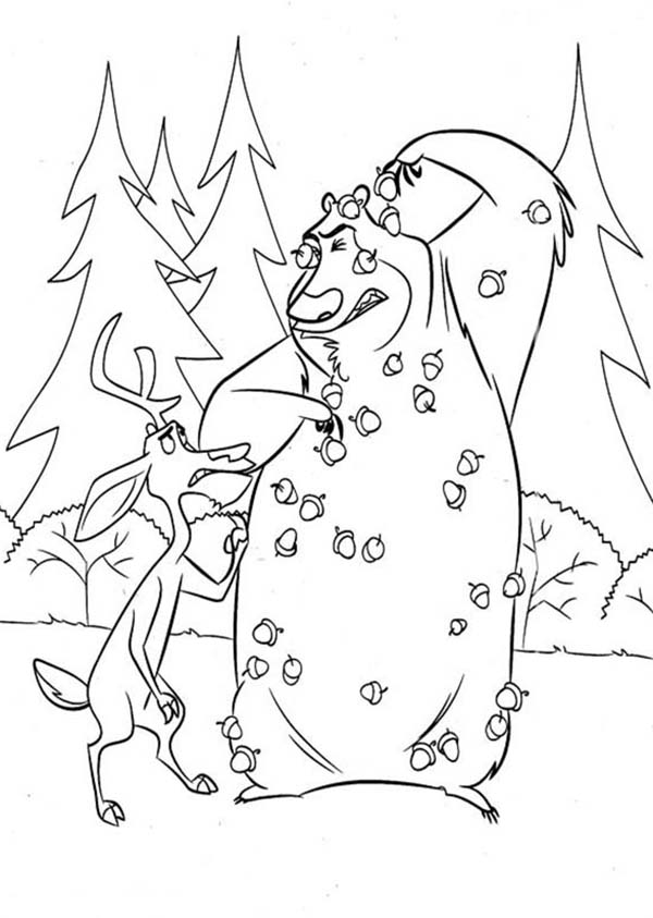 Oliver and Company, : Boog Being Pelted with Pine Fruit in Open Season Coloring Pages