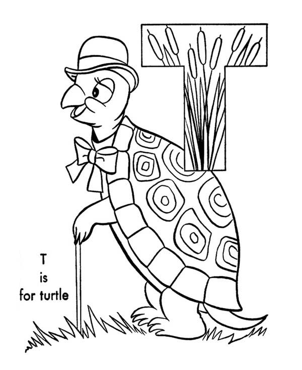 Letter T, : Capital Letter T is for Turtle Coloring Page