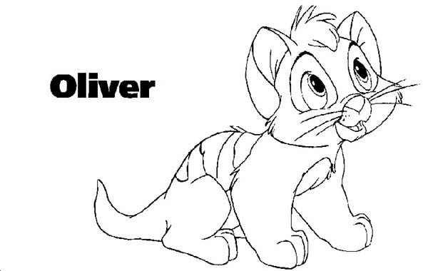 Oliver and Company, : Cute Oliver in Oliver and Company Coloring Pages