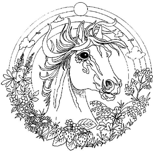 Mandala Animal, : Horse Painting Mandala Animal Coloring Pages