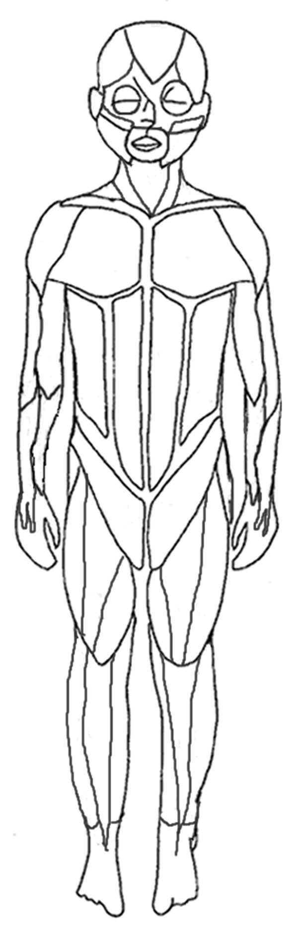 Human Anatomy, : Human Anatomy Human Muscles Coloring Pages