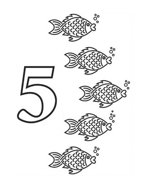 Number 5, : Kindergarden Kids Learning Learn Number 5 Coloring Page