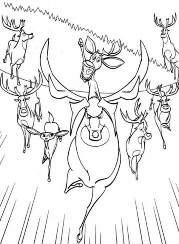 Oliver and Company, : Lead by Elliot the Animals are Running Together in Open Season Coloring Pages