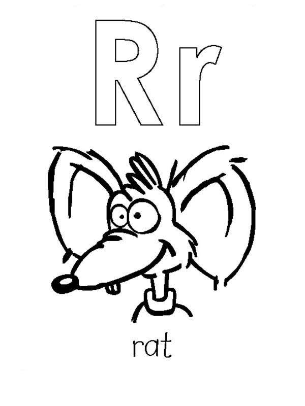 Letter R, : Learning Capital and Small Letter A is for Rat Coloring Page