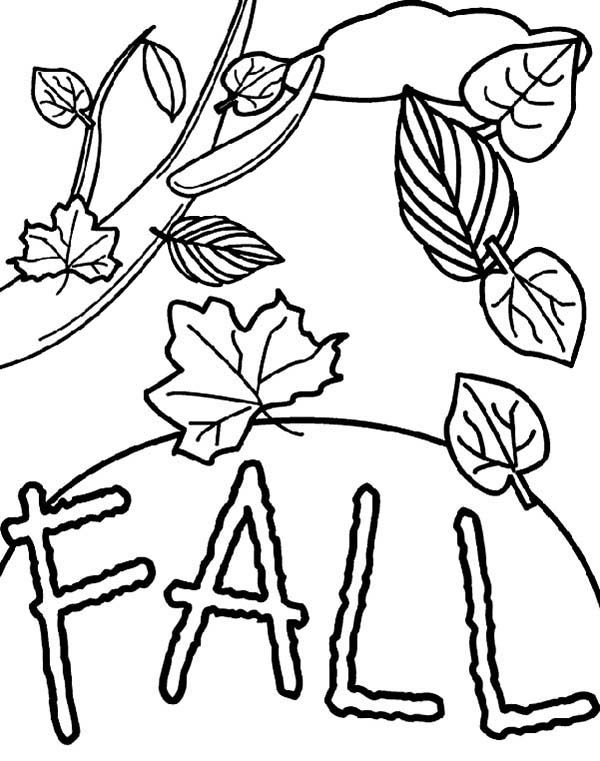 Leaves, : Leaves Falling from Tree Coloring Pages