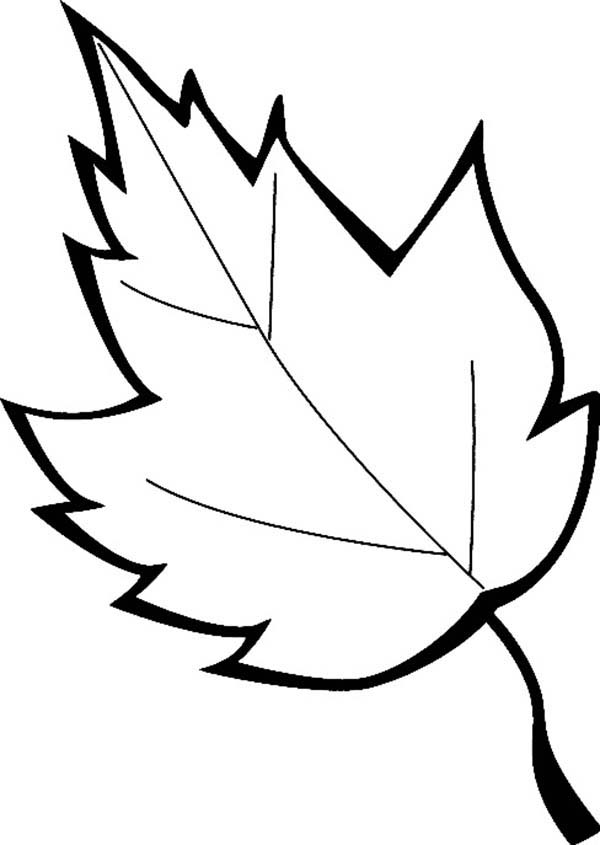 Leaves, : Leaves Falls Coloring Pages
