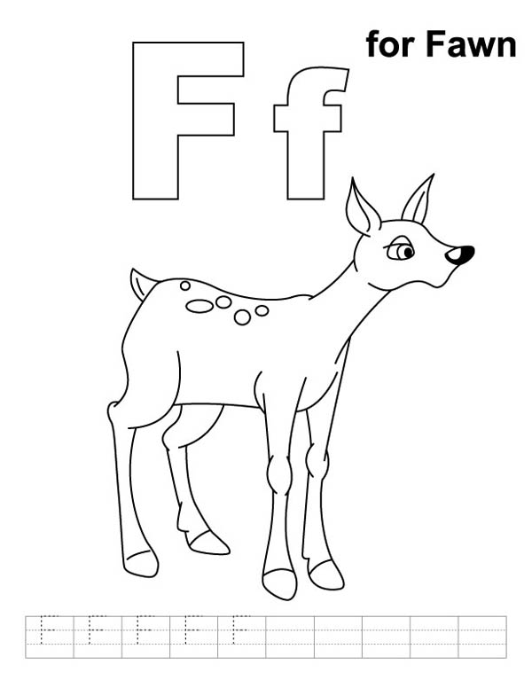 Letter F, : Letter F is for Fawn Coloring Page