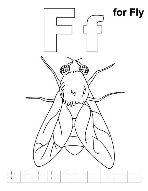 Letter F, : Letter F is for Fly Coloring Page