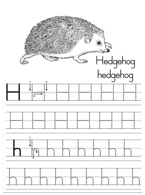 Letter H, : Letter H is for Hedgehog Worksheet Coloring Page