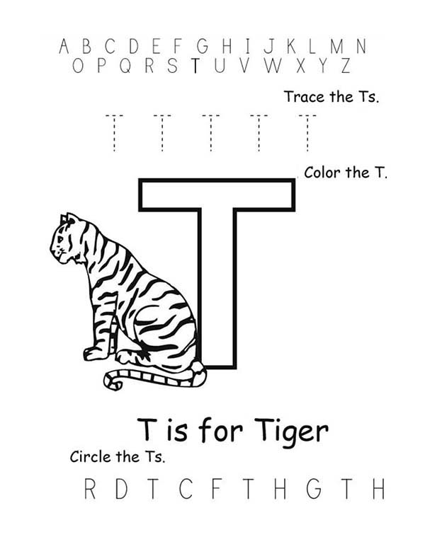 Letter T, : Letter T is fo Tiger Coloring Page