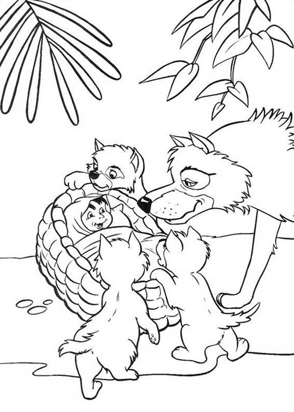Jungle Book, : Little Mowgli Found by Akela in Jungle Book Coloring Pages