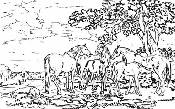 Landscapes, : Mares and Foals in a River Landscapes Coloring Pages