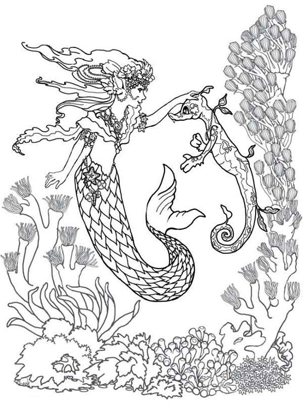 Mermaid, : Mermaid Fairy and Sea Horse Coloring Pages