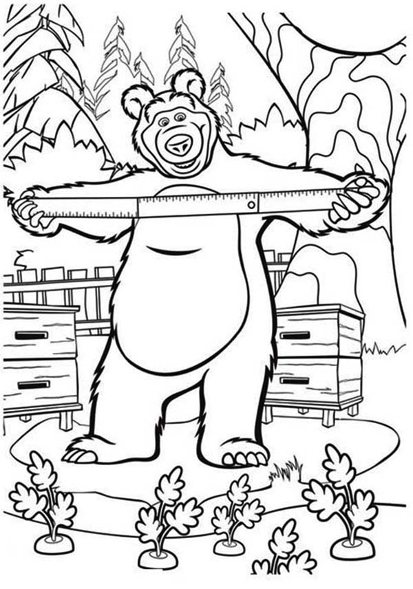 Mascha and Bear, : Mischa Measuring Beehive in Mascha and Bear Coloring Pages