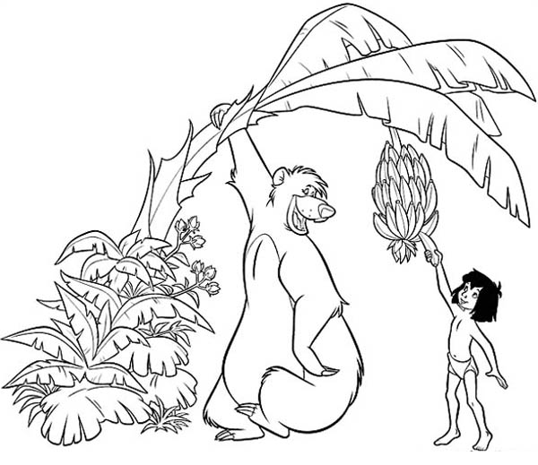Jungle Book, : Mowgli Pick Banana with Baloo Help in Jungle Book Coloring Pages