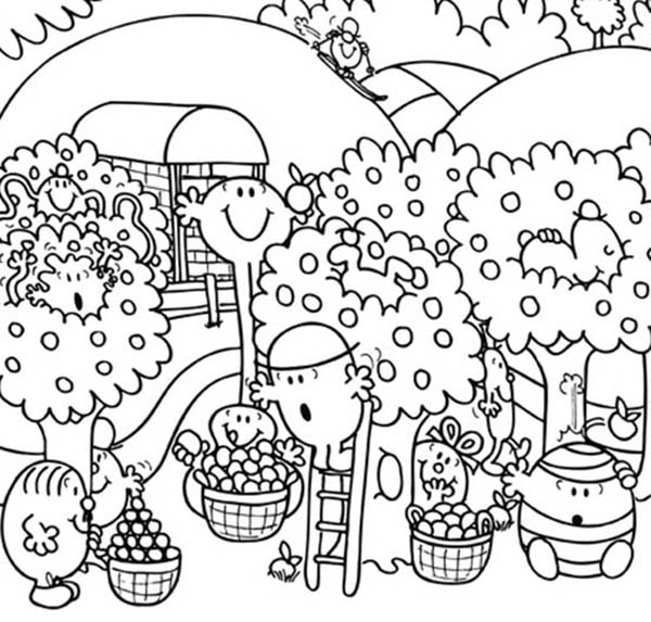 Mr Men and Little Miss, : Mr Men and Little Miss Fruit Harvesting Coloring Pages