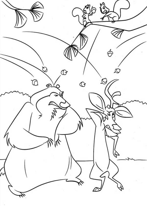 Oliver and Company, : Other Animal Didn't Like Boog and Elliot in Open Season Coloring Pages