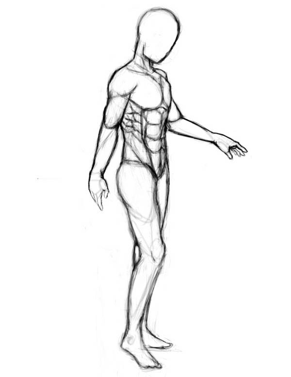 Human Anatomy, : Sketch of Human Anatomy Coloring Pages