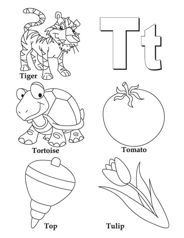Letter T, : Things Comes with Letter T Coloring Page
